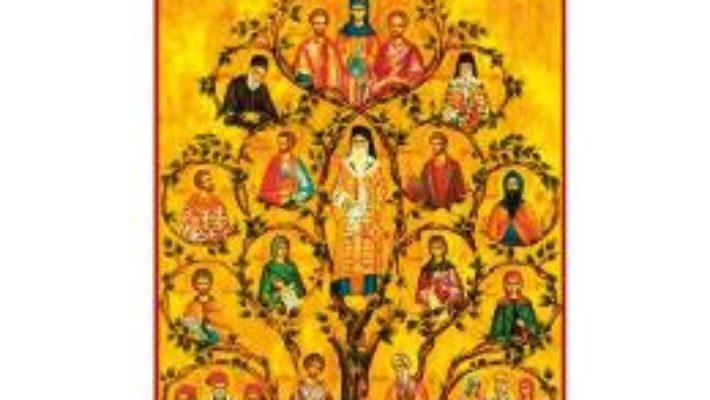 Cartea Pe mine m-a operat Sfantul Nectarie ed.2018 (download, pret, reducere)