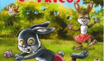 Cartea Iepurasul cel fricos (Povestiri din padurea verde) – Claudia Cojocaru (download, pret, reducere)