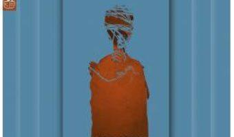 Cartea Fiara. Nevisatorul. Trei – Luminita Dascalu (download, pret, reducere)