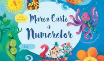 Cartea Marea carte a numerelor – Felicity Brooks, Sophia Touliatou (download, pret, reducere)