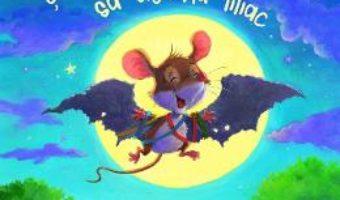 Cartea Soricelul care visa sa devina liliac – Steve Smallman (download, pret, reducere)