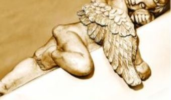 Cartea Modestul intelept – Ciprian Vestemean (download, pret, reducere)