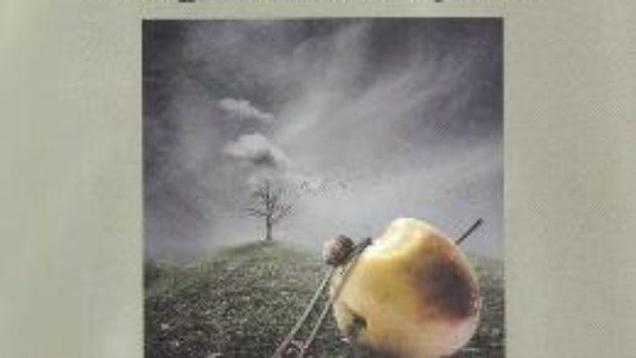 Cartea Zapezi in august – Andrei Turcanu (download, pret, reducere)