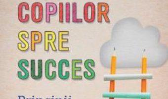Cartea Indrumarea copiilor spre succes – Paul Tough (download, pret, reducere)