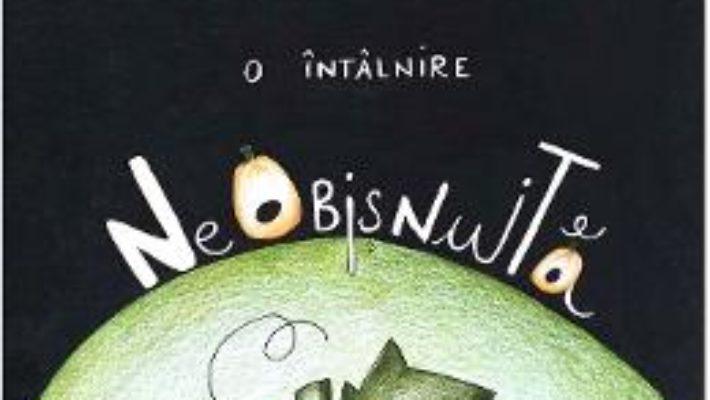Cartea O intalnire neobisnuita – Dana Cristiana Maier, Flavia Maria Chiper (download, pret, reducere)