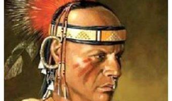 Cartea Testamentul incasului – Karl May (download, pret, reducere)