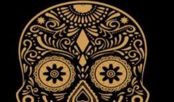Cartea Sub vulcan – Malcolm Lowry (download, pret, reducere)