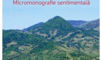 Cartea Panoramic maierean – Iacob Naros (download, pret, reducere)