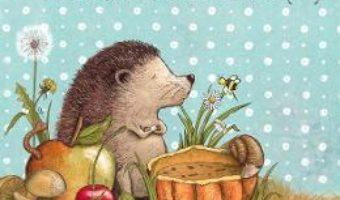 Cartea Brici, un arici mofturici – Andrea Reitmeyer (download, pret, reducere)