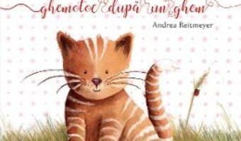 Cartea Tomita, un ghemotoc dupa un ghem – Andrea Reitmeyer (download, pret, reducere)