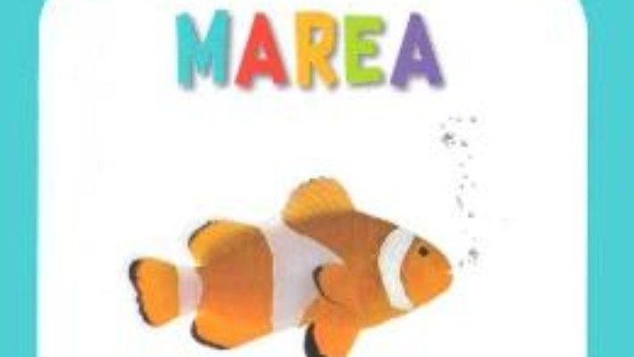 Cartea Marea – Bebe cunoaste (download, pret, reducere)