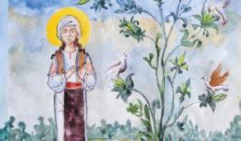 Cartea Filofteia, Marea Sfanta Mica – Brandusa Vranceanu (download, pret, reducere)