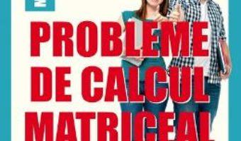 Cartea Probleme de calcul matriceal – Florin Stanescu (download, pret, reducere)