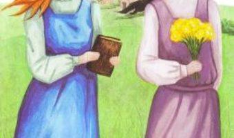 Cartea Anne, invatatoare in Avonlea – L.M. Montgomery (download, pret, reducere)