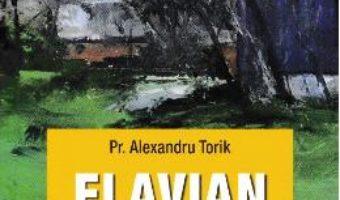 Cartea Flavian vol.2: Viata merge inainte – Alexandru Torik (download, pret, reducere)