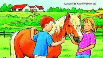 Cartea Ce a patit Morcovel? Proba de curaj – Annette Neubauer, Petra Wiese (download, pret, reducere)