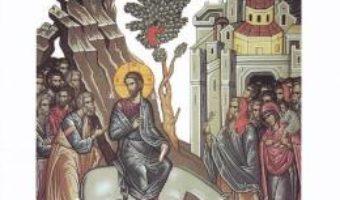 Cartea Intrarea Domnului in Ierusalim (Cele mai frumoase predici) – Bartolomeu Anania, Ion Buga (download, pret, reducere)