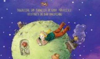 Cartea Micul print – Antoine de Saint-Exupery, Dan Ungureanu (download, pret, reducere)