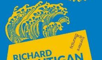 Cartea Caderea unui sombrero – Richard Brautigan (download, pret, reducere)