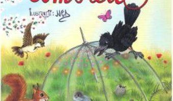 Cartea Umbrela – Claudia Cojocaru, Catalin Nedelcu (download, pret, reducere)