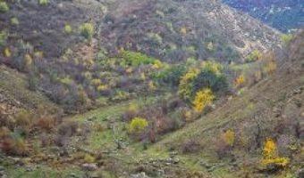 Cartea Discover Moldova – Iurie Raileanu (download, pret, reducere)