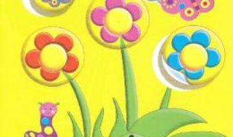 Cartea Dezvoltam logica cu abtibilduri: Flori (download, pret, reducere)