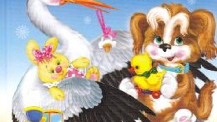 Cartea Din folclorul copiilor: Catelus cu parul cret (download, pret, reducere)