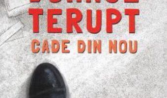 Cartea Domnul Terupt cade din nou – Rob Buyea (download, pret, reducere)