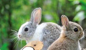 Cartea Strumfii si animalele domestice (download, pret, reducere)