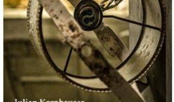Cartea O camera mai mare decat painea – Julian Kornhauser (download, pret, reducere)