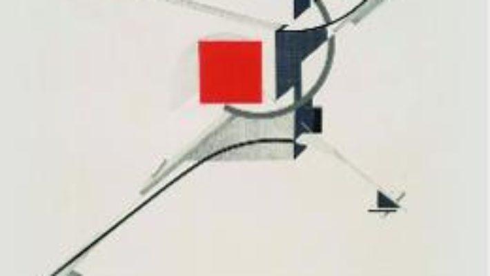 Cartea Geometrizari – Constantina-Raveca Buleu (download, pret, reducere)
