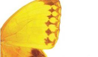 Cartea Fluture in palma – Aleksandr Tkacenko (download, pret, reducere)