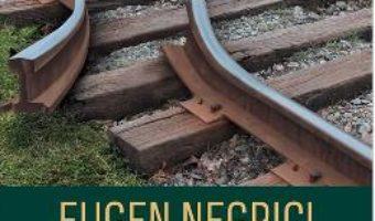 Cartea Simulacrele normalitatii – Eugen Negrici (download, pret, reducere)