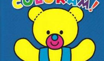 Cartea Hai sa coloram! 4 (download, pret, reducere)