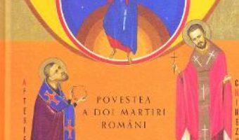 Cartea Povestea a doi martiri romani: Vasile Aftenie, Tit Liviu Chinezu (download, pret, reducere)