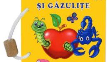 Cartea Ganganii si gazulite – Silvia Ursache-Brega (download, pret, reducere)