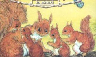 Cartea Animale salbatice in natura: Veverita – Renne (download, pret, reducere)