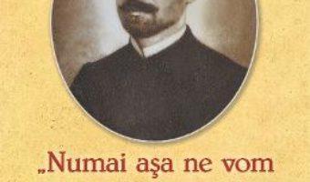 Cartea Parintele Radu Stanciu in dosarele Securitatii – Sergiu Ciocarlan (download, pret, reducere)
