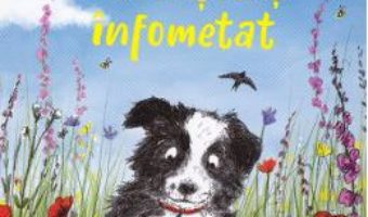 Cartea Doggy, un catelus infometat – Helen Peters (download, pret, reducere)