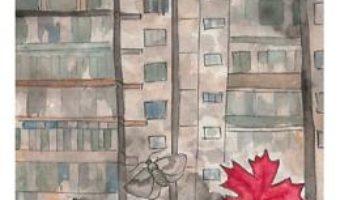 Cartea Fluturi cenusii – Paulina Popescu (download, pret, reducere)