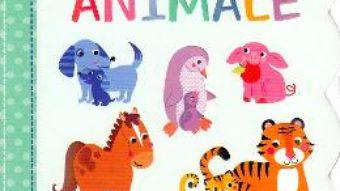 Cartea Carticica mea cu ferestruici. Animale (download, pret, reducere)