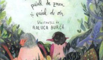 Cartea Puiul de balaur, puiul de zmeu si puiul de om – Florin Lazarescu, Raluca Burca (download, pret, reducere)