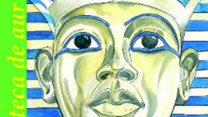 Cartea Enigmele civilizatiilor – Petre Ghelmez (download, pret, reducere)