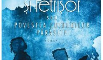 Cartea Luluta si Petrisor – Nicoleta Beraru (download, pret, reducere)