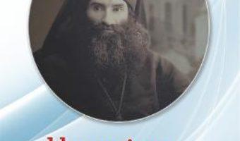 Cartea Un episcop nonconformist – Egumenul Damaschin (download, pret, reducere)