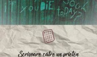 Cartea Scrisoare catre un prieten si inapoi catre tara – Ruxandra Cesereanu (download, pret, reducere)