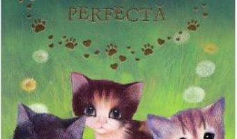 Cartea Pisicuta perfecta – Holly Webb (download, pret, reducere)