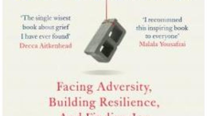 Cartea Option B: Facing Adversity, Building Resilience, and Finding Joy – Sheryl Sandberg, Adam Grant (download, pret, reducere)