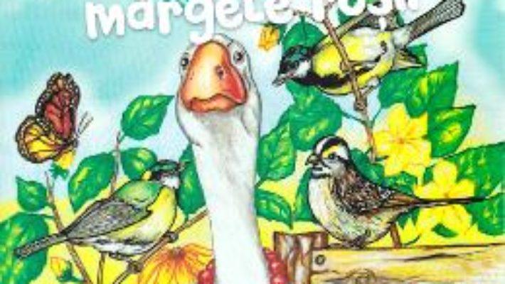 Cartea Gasca cu margele rosii – Dorin bujdei (download, pret, reducere)