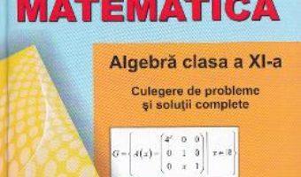 Download  Matematica – Clasa a 11-a – Algebra. Culegere de probleme – Marius Dragomir PDF Online